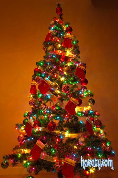 2015 الكريسماس 1418471726396.jpg
