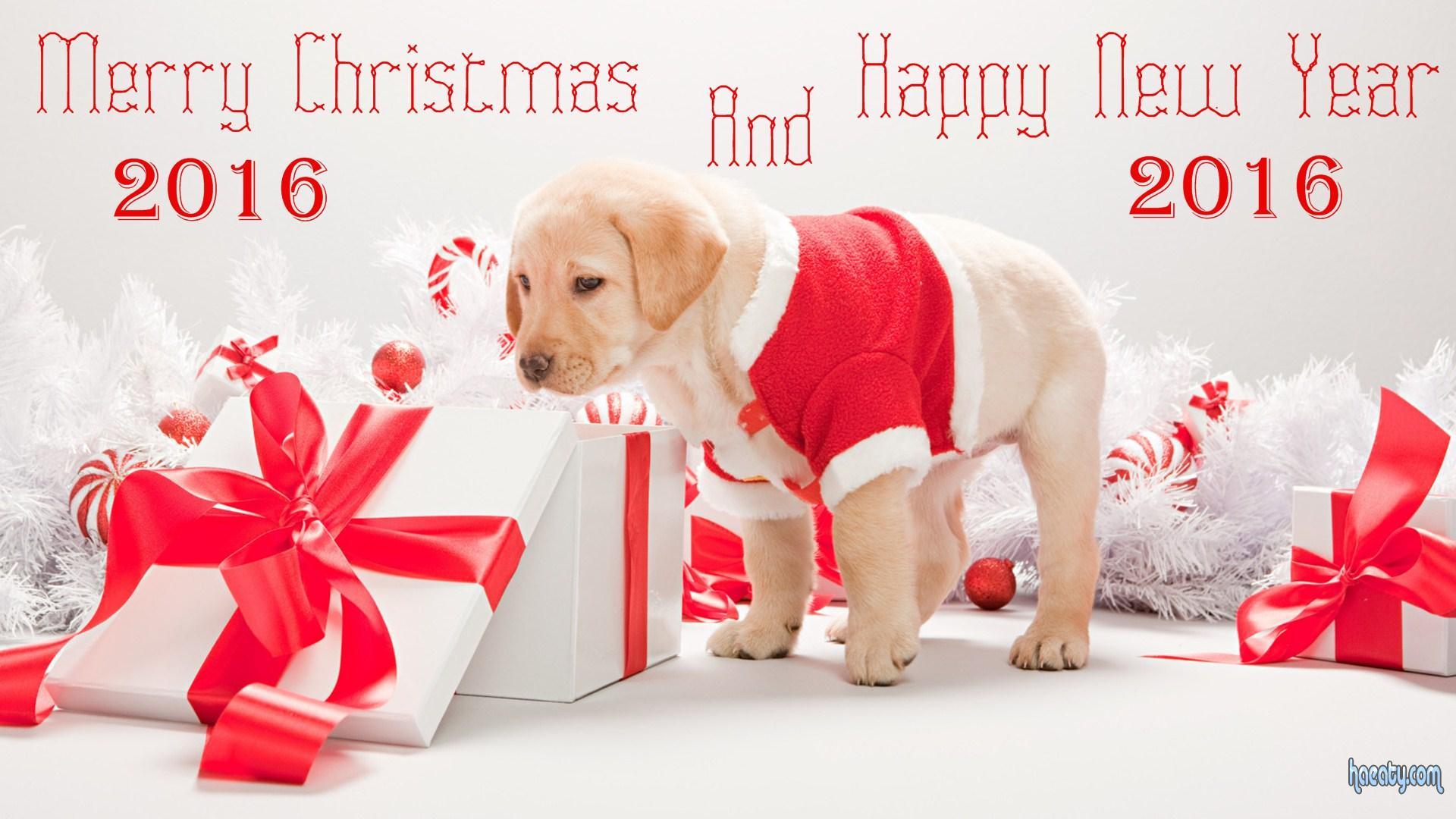 الكريسماس 2016-Merry-Christmas-and-Happy-new-year-2016 145054043591.jpg