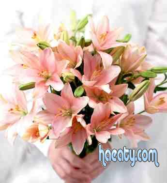 رومانسية 2014 2014 Photos 1377659208885.jpg