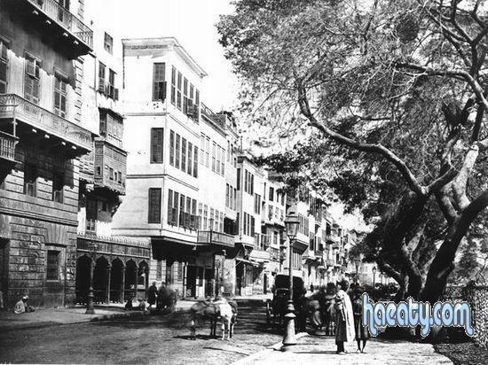 Photos Egypt 1377738208462.jpg