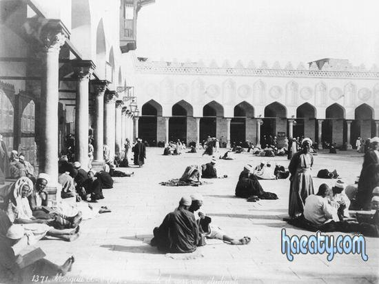 Photos Egypt 1377738208854.jpg