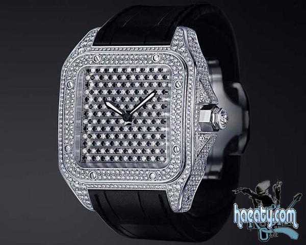 2014 2014 Luxury watches 1377741463121.jpg