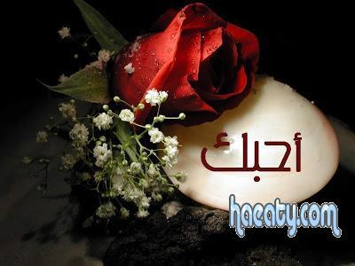 رومانسية 2014 رومانسية 2014, Photos 1377777889975.jpg