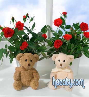 رومانسية 2014 2014 1378777188153.jpg