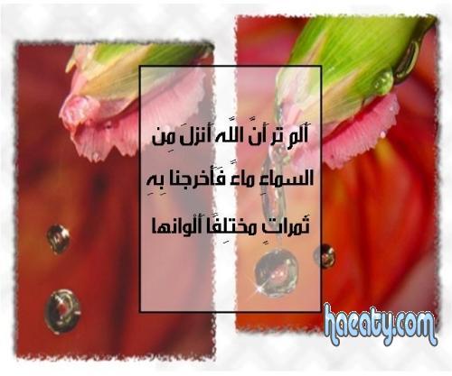 2014 1380219192232.jpg
