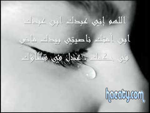 2014 1380222487027.jpg
