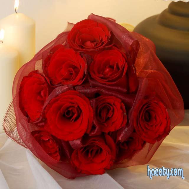 رومانسيه 138023491192.jpg