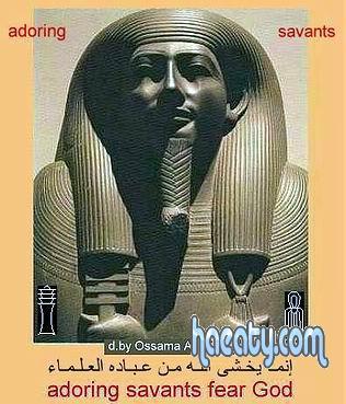 الحضارة 2014 1382295661216.jpg
