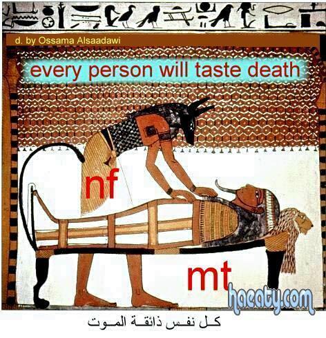 الحضارة الفرعونية 2014 1382306789277.jpg