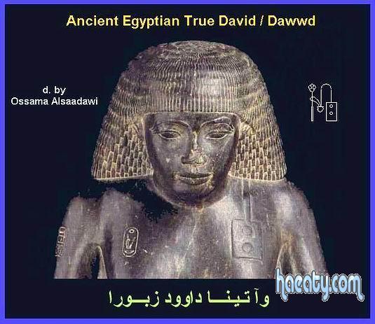 الحضارة 2014 1382310195855.jpg