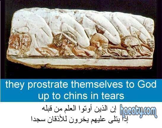 اكتشافات الفرعونية 2014 13823110400810.jpg