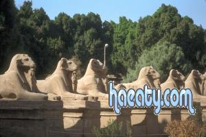 الفرعونية 2014 1382352405032.jpg