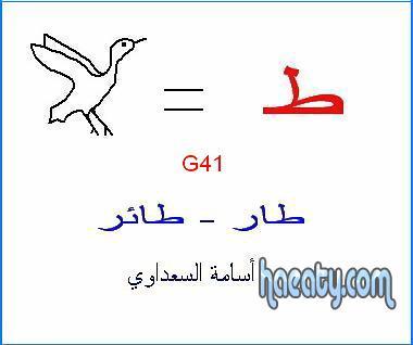 العربية 2014 1382393197181.jpg