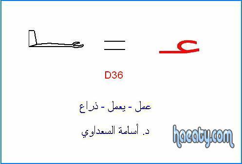 العربية 2014 138239319952.jpg