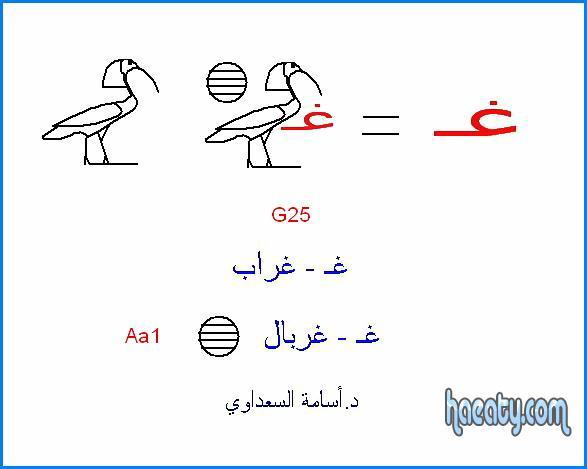 العربية 2014 1382393201563.jpg