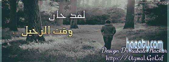 2014 1382736483464.jpg