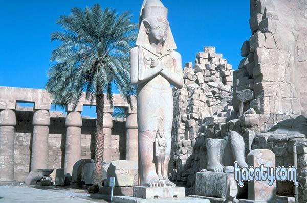 الفرعونية 138277659837.jpg