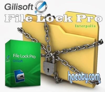 GiliSoft File Lock 1386068460771.jpg