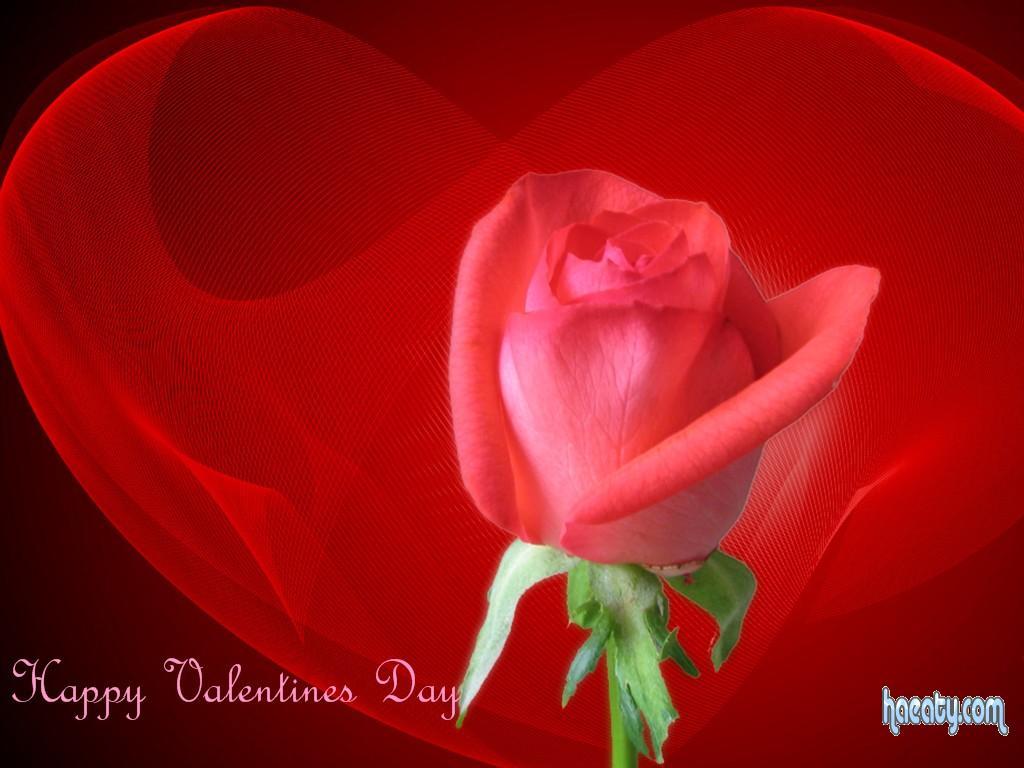 Happy Valentines 2014 1391689605326.jpg