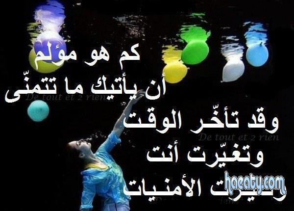 1394878514235.jpg