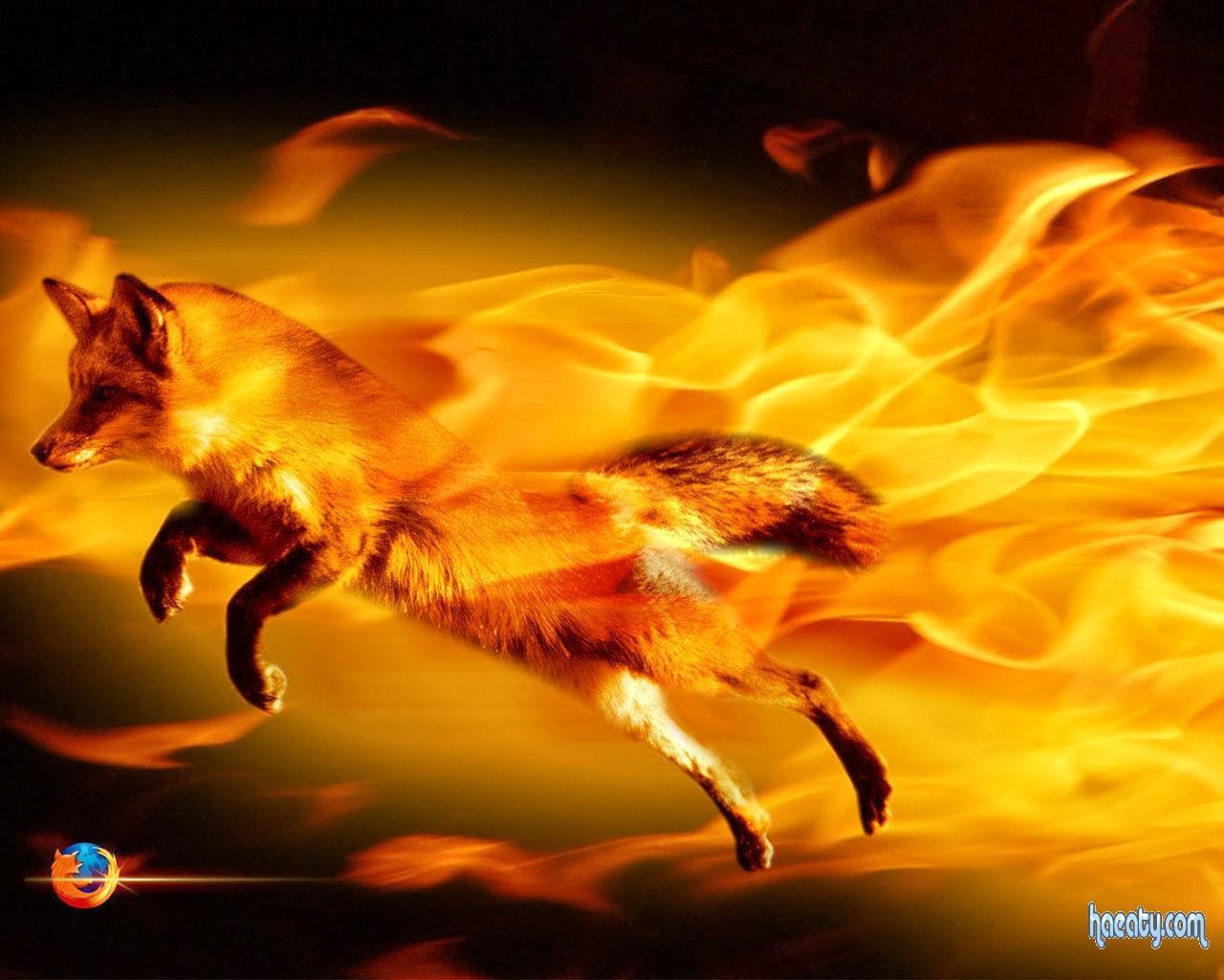 Download Mozilla Firefox free 1394958568992.jpg