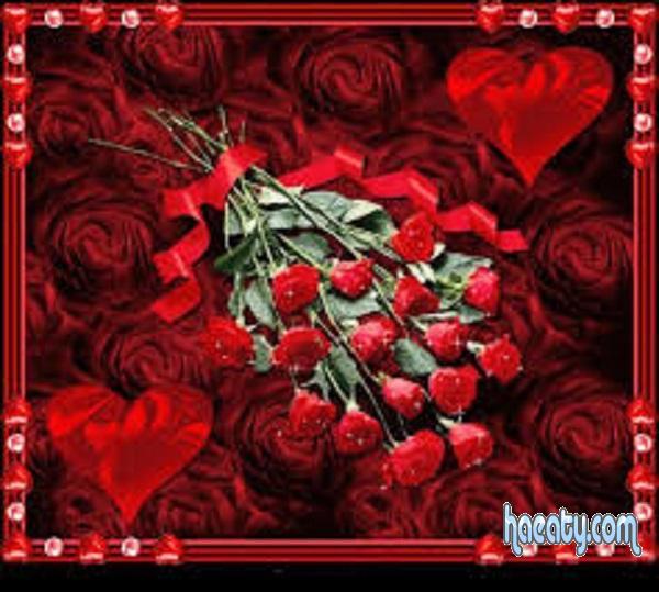 رومانسية 2017 2017 Photos Flowers 1485198209441.jpg